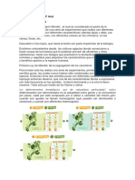 Resumen Del Portal Academico CCH
