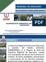 Diagnostico_Ambiental GRNGMA