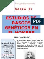 188029567-Rasgos-Geneticos-en-el-Hombre.pptx