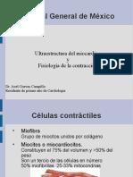 Clase Ultraestructura y Contracción