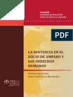 La Sentencia en el Juicio de Amparo y los Derechos Humanos.pdf