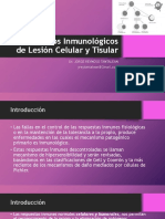 08_Mecanismos Efectores de La Inmunidad Humoral-Tisular_V2