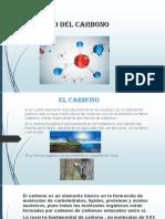 Ciclo Del Carbono Como Diapositiva
