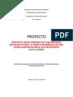 Proyecto Aldea Clarines v1 (2)