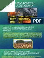 Incendio Forestal en La Amazonia