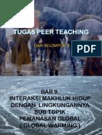 Peer Teaching Global Warming