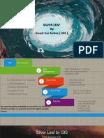 Presentation GIS Management