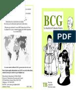 BCG Brochure