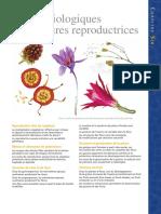 Cycles Biologiques Et Structures Reproductrices Chap06