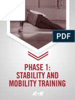 Ace Phase 1- Stability and Mobility Training