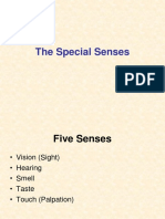 8 - The Special Senses.ppt