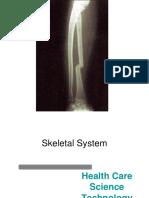 Skeletal System ppt.ppt