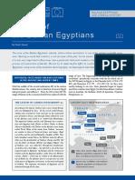 History of the Balkan Egyptians.pdf