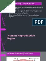 Human-Reproductive-Organ.pptx