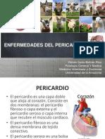 Enfermedades Del Pericardio PDF