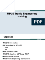 Mani MPLS TE Training