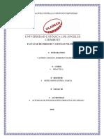 Actividad de Investigación Formativa de Unidad I