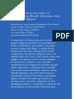 relacoes_ceu_terra_entre_os_indigenas_no_Brasil.pdf