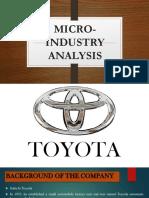 Micro Industry Analysis