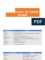 Etymology Insect Orders
