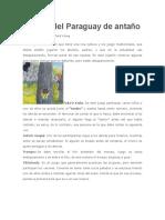 Juegos Del Paraguay