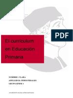 Actividad curriculum primaria