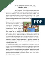 Los Derechos de Los Pueblos Indígenas Xinca, Maya, Garífuna y Ladino