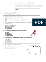 Evaluación Intermedia Ciencias Naturales Quinto Básico