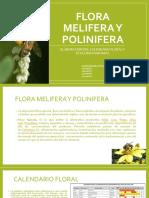 Flora Melifera y Polinifera