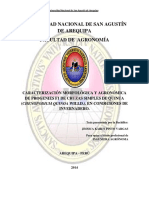 CARACTERIZACION MORFOLOGICA Y AGRONOMICA DE PROGENIES F1 DE CRUCES SIMPLES DE QUINUA BAJO INVERNADERO