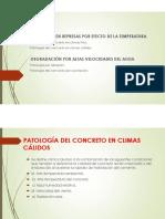 Patología en represas