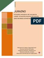 Informe Departamental Durazno 2013