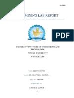 Data Mining Lab Report