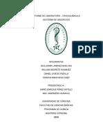 Laboratorio de Adsorción..pdf