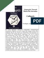 Tarozzi, Giancarlo; Fiorentino, Maria Pia - Calligaris - Vorläufer Einer Neuen Ära (1981, Text, dsb.)