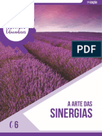 C6 - Sinergias (1).pdf