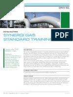 SY 25 Synergi Gas Standard Tcm8 18909