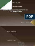 Patologia Fonatoria - Voz