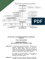176306335-Estatuto-UNSM.docx