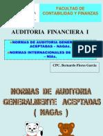 Normas de Auditoria - Nagas-1