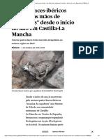 Quatro Linces-ibéricos Mortos Às Mãos de Caçadores Desde o Início Do Ano _ Espanha _ PÚBLICO