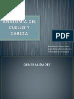 Anatomia Del Cuello y Cabeza