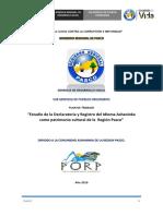 PLAN PUEBLOS ORIGINARIOS.docx