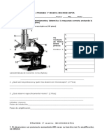 Test Microscopio