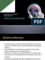 revisaoneuroanatomia1pdf_1558046428.pdf