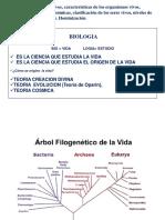 arbol filogenetico de la vida