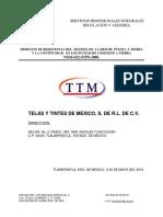 ESTUDIO DE TF  TTM 2014.pdf