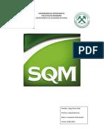 306466358-Sqm.docx