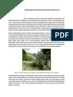 Merancang Program Berkelanjutan (Sustainable Develoment Program) Di Masyarakat