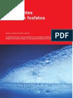 formulacion de detergentes a base o no de fosfaos.pdf